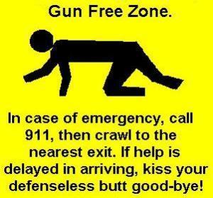 001-0801121510-gun_control
