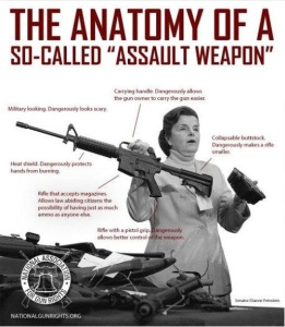 Assault-weapon-courtesy-libertyzone.wordpress.com_