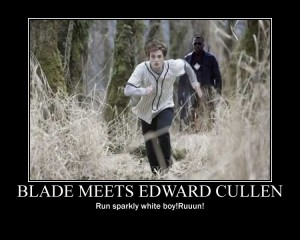 blade_vs_edward_cullen_by_sarah_93_yin_yang-d4j0hzb