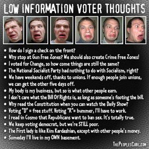 Low_Information_Voter_Thoughts