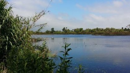 tijuana_river